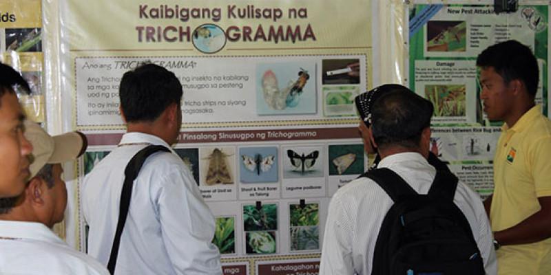 Kahariam Farms ASEAN-4